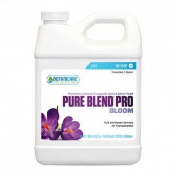 Pure Blend Pro Bloom Qt